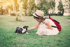 Fille heureuse jouant avec le petit chien à l'arrière-plan de nature Image stock