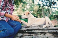Fille heureuse jouant avec le petit chien à l'arrière-plan de nature Photographie stock libre de droits