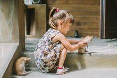 Fille jouant avec des chatons sur la terrasse Photo stock
