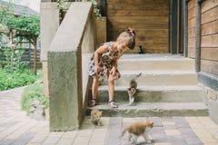 Fille jouant avec des chatons sur la terrasse Photographie stock