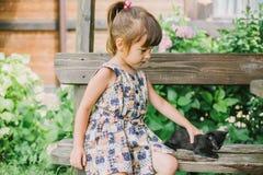 Fille jouant avec des chatons sur un banc Photos stock