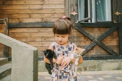 Fille jouant avec des chatons sur un banc Image stock