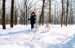 Fille jouant avec des chiens dans la neige Image stock