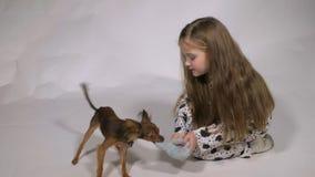 Fille jouant avec le crabot banque de vidéos