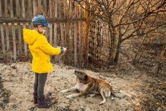 Fille jouant avec un chien sur la rue avec un brin Photo stock
