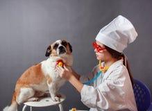 Fille jouant le vétérinaire avec le chien images stock