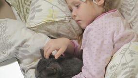 Fille malade avec une température Un enfant avec la fièvre se situe dans le lit avec un chat clips vidéos