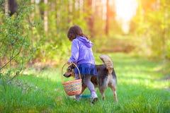 Fille marchant avec un crabot Photographie stock