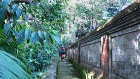 Fille marchant par la barrière en pierre de temple et observant des singes clips vidéos