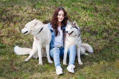 Fille mignonne avec deux chiens enroués photo stock