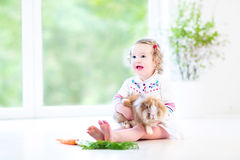 Fille mignonne d'enfant en bas âge avec les cheveux bouclés avec le vrai lapin Image stock