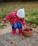 Fille mignonne d'Ittle avec le panier de canneberges images libres de droits