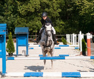 Fille montant le poney rouan sur la concurrence de showjumping Photo libre de droits