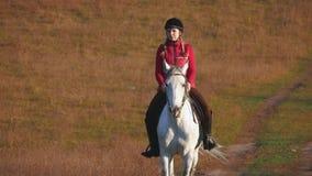 Fille montant un cheval marchant dans le pré Mouvement lent banque de vidéos
