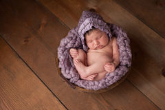 Fille nouveau-née dormant dans la cuvette en bois Photographie stock libre de droits