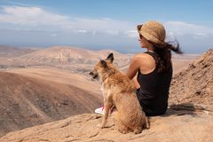 Fille observant le panorama avec son chiot image stock