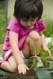 Fille plantant la plante Images libres de droits