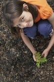 Fille plantant le caroubier noir Photos stock