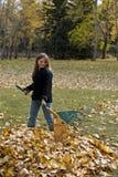 Fille ratissant des feuilles Photographie stock