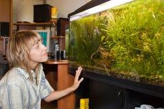 Fille regardant l'aquarium Image stock