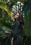 Fille romantique de beauté extérieure Beau Dressed modèle adolescent dans la robe verte à la mode posant dehors en parc photographie stock