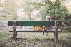 Fille s'asseyant sur le banc avec Teddy Bear Photographie stock