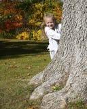 Fille se cachant derrière l'arbre Photo stock