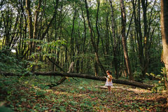 Fille se tenant dans le portrait en bois d'une fille dans les bois Ours Photographie stock