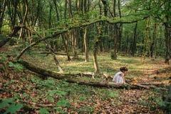 Fille se tenant dans le portrait en bois d'une fille dans les bois Ours Image libre de droits