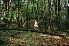 Fille se tenant dans le portrait en bois d'une fille dans les bois Ours Images libres de droits