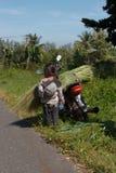 Fille se tenant prêt une motocyclette surchargée avec l'herbe Photos stock