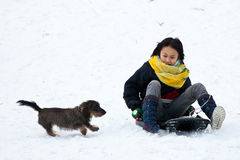 Fille sledging avec son chien Image libre de droits