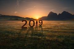 Fille solitaire semblant en avant et inquiétée pour 2019 Photographie stock