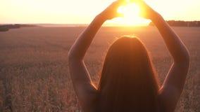 Fille sur le champ de blé faisant le symbole de coeur au coucher du soleil clips vidéos