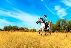 Fille sur un cheval Photos libres de droits