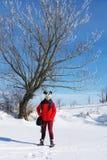 Fille sur un fond d'un paysage d'hiver photographie stock libre de droits
