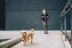 Fille sur un scooter Image stock