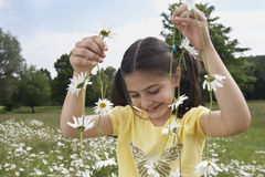 Fille tenant Daisy Chains In Meadow Photo libre de droits