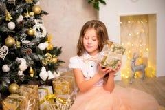 Fille tenant le cadeau de Noël Photographie stock