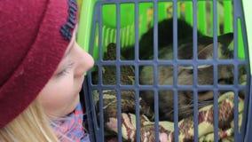 Fille tenant un conteneur avec un chat clips vidéos
