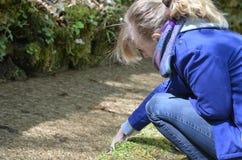 Fille touchant l'eau Photo libre de droits