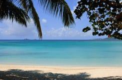 Fille tropicale Photos libres de droits