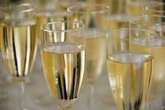 Filled champagne glasses Stock Images