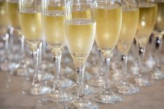 Champagne Glasses royalty free stock photos