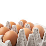 Filled egg carton package isolated Royalty Free Stock Photos