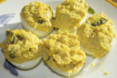 Filled eggs at the tuna Stock Photos