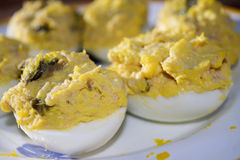 Filled eggs at the tuna Royalty Free Stock Photos