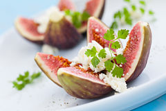Filled Figs Stock Image