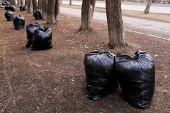 Filled with garbage black plastic bags in nature, in a public Park, along the road. Spring or autumn cleaning of the city from stock image