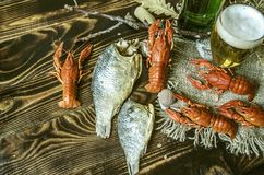 Filled glass with foamy beer, salted and dried carp with red cancers Royalty Free Stock Photo